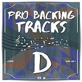 Pro Backing Tracks D, Vol.22 by Pop Music Workshop