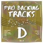Pro Backing Tracks D, Vol.24 by Pop Music Workshop