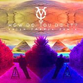 How Do You Do It (Keith Sweaty Remix) de Yellow Ostrich