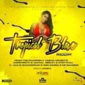 Tropical Blaze Riddim von Various Artists