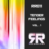 Tender Feelings, Vol. 1 by Various Artists