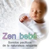 Zen bebé - Música y sonidos pacíficos de la naturaleza relajante para los bebés y niños pequeños de Meditación Música Ambiente