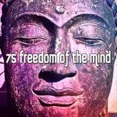 75 Freedom Of The Mind von Massage Therapy Music