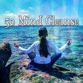 50 Mind Cleanse von Massage Therapy Music