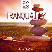 Tranquility: Just Relax - 50 Deep Meditation Tracks and Healing Sounds to Relax, Music for Spa, Study, Sleep and Well Being by Various Artists