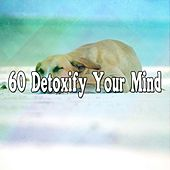 60 Detoxify Your Mind by Lullaby Land