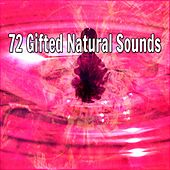 72 Gifted Natural Sounds by Music For Meditation