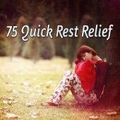 75 Quick Rest Relief de Sounds Of Nature