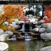 Le bien-être de l'eau (Musique pour se détendre, se relaxer, méditer et se sentir bien) von Fabian Laumont