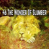 46 The Wonder Of Slumber by Ocean Sounds Collection (1)