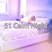 51 Calm Night de White Noise Babies