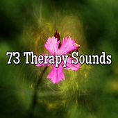 73 Therapy Sounds de Zen Meditation and Natural White Noise and New Age Deep Massage