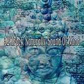 52 Track Naturally Sound Of Mind by Classical Study Music (1)