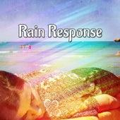 Rain Response de Thunderstorm Sleep