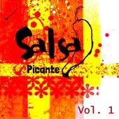 Salsa Picante, Vol. 1 de Various Artists