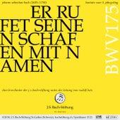 Bachkantate, BWV 175 - Er rufet seinen Schafen mit Namen von Various Artists