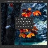 Reiki Musique Une Guérison Emotionelle Et Corporelle (Musique Reiki Pour Se Détendre Et Se Sentir Bien) de Various Artists