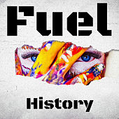 History by Fuel