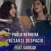 Besarte Despacio (feat. Gabigar) von Pablo Herrera