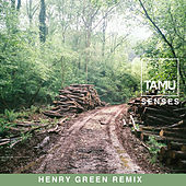 Senses (Henry Green Remix) von Tamu Massif