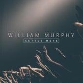 Settle Here de William Murphy