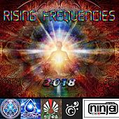 Rising Frequencies, Vol. 1 by Various Artists