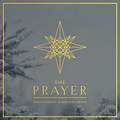 The Prayer by Danny Gokey