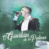 El Gavilán De La Palma (En Vivo) by Crecer Germán