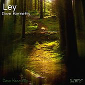 Ley by Dave Harnetty