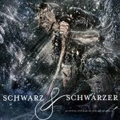 Immernacht by Schwarz