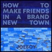 How to Make Friends in a Brand New Town von Joeboy