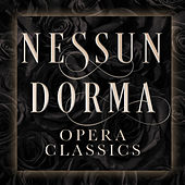 Nessun Dorma: Opera Classics by Various Artists