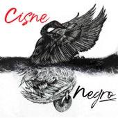 Cisne Negro von Jezzy P