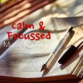 Calm & Focussed: Music For Study von Antonio Paravarno