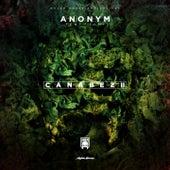 Canabez 2 von Anonym