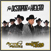Pa Destapar La Hielera (En Vivo) by El Potro De Sinaloa