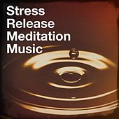 Stress release meditation music by Various Artists