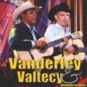 Adubando as Raízes by Vanderley e Valtecy