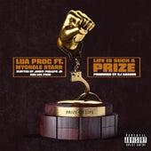 Life Is Such a Prize de Lua'proc