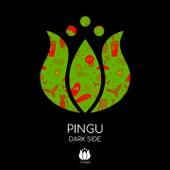Dark Side von Pingu