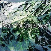 Nature For Crucial Sleep von Rockabye Lullaby