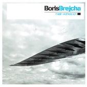 Mein Wahres Ich by Boris Brejcha