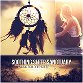 Soothing Sleep Sanctuary: Dreaming and Sleep Deeply, Quiet Music to Help You Relax and Calm Your Mind, Natural Hypnosis by Various Artists