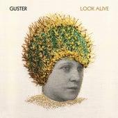 Look Alive de Guster