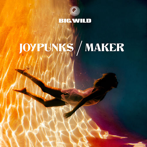 Joypunks / Maker by Big Wild