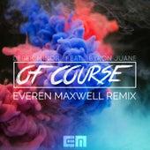 Of Course (Everen Maxwell Remix) by Derek Minor