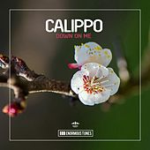 Down on Me von Calippo