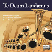 Te Deum Laudamus (The Nicholson Organ of Portsmouth Cathedral) by David Price