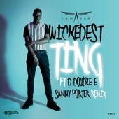 Wickedest Ting (Sammy Porter Remix) di Jamakabi