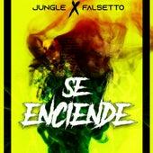 Se Enciende by Jungle (2)